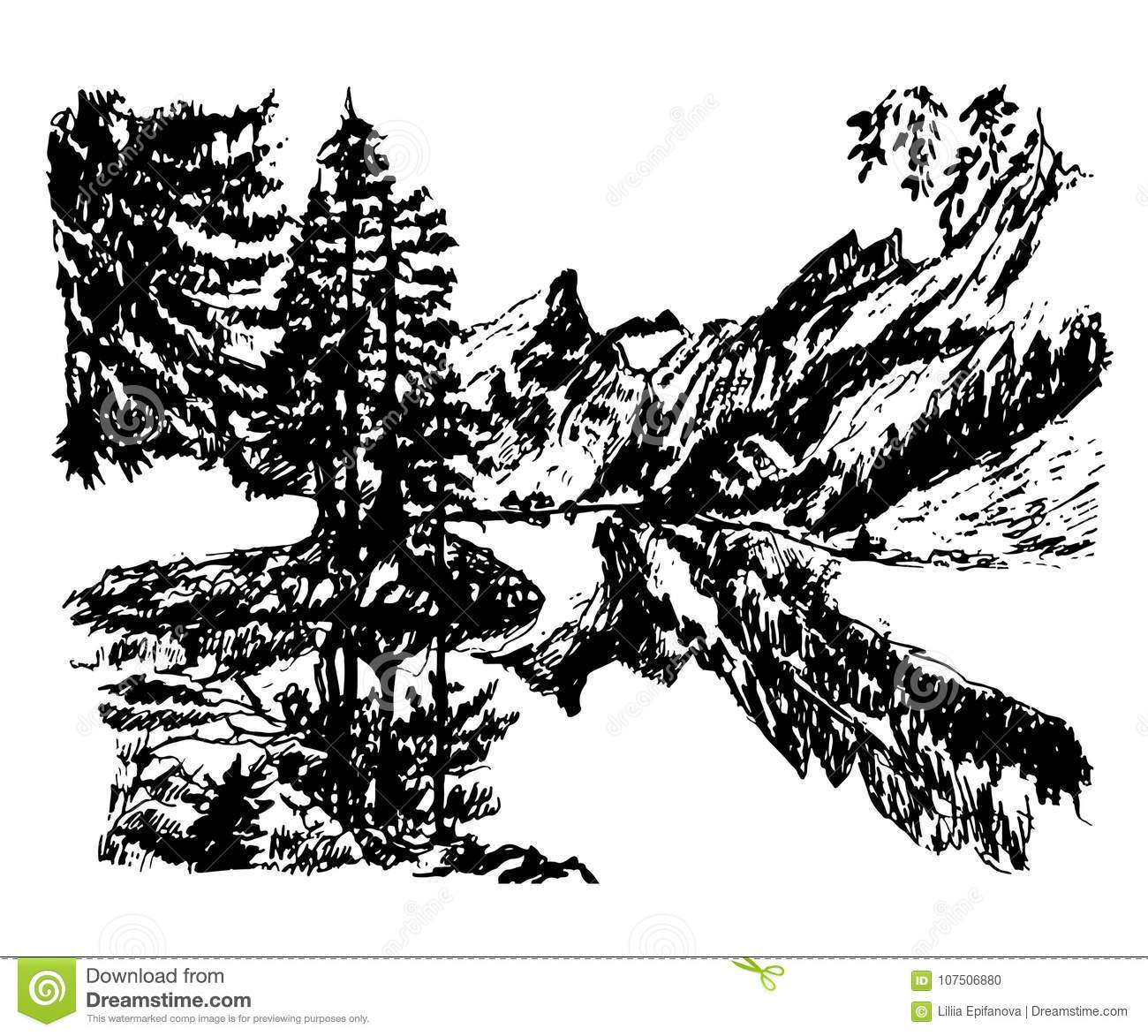 Drawing background landscape beautiful mountain lake in the middle of a coniferous forest, hand-drawn vector illustration