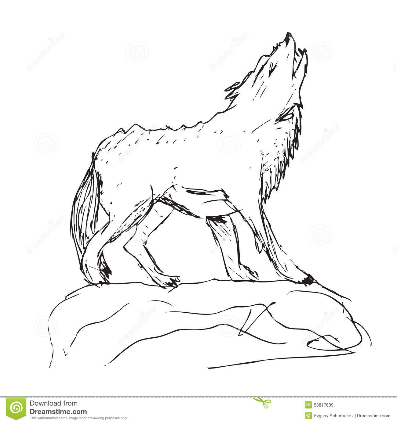 Drawing of a big wolf stock illustration illustration of icon 50817639 - Dessin de loup simple ...