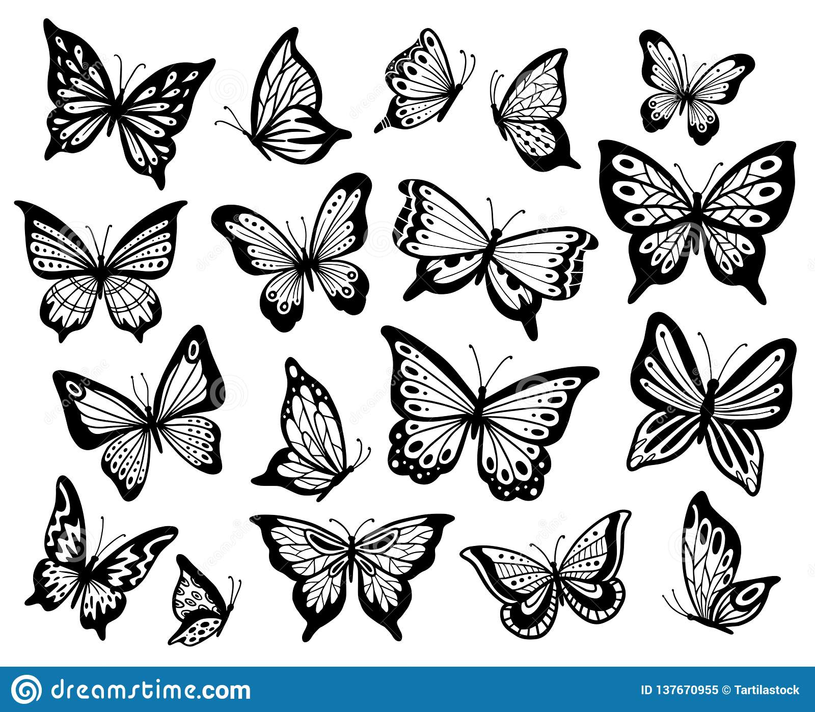 5461d9dcb Drawing butterflies. Stencil butterfly, moth wings and flying insects. Butterflies  tattoo sketch, fly insect black hand drawn engraving.