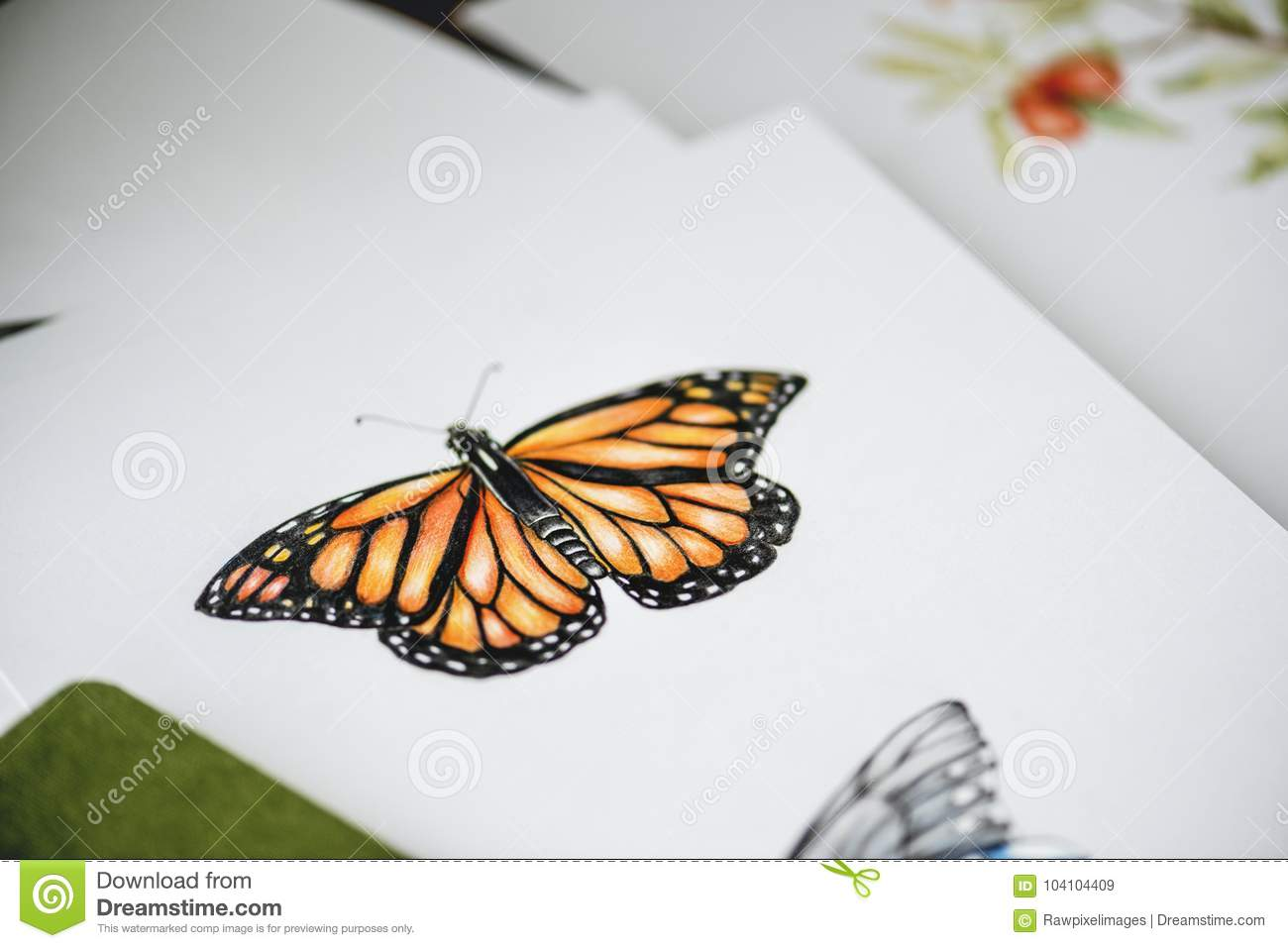 Drawing of butterfly on white paper