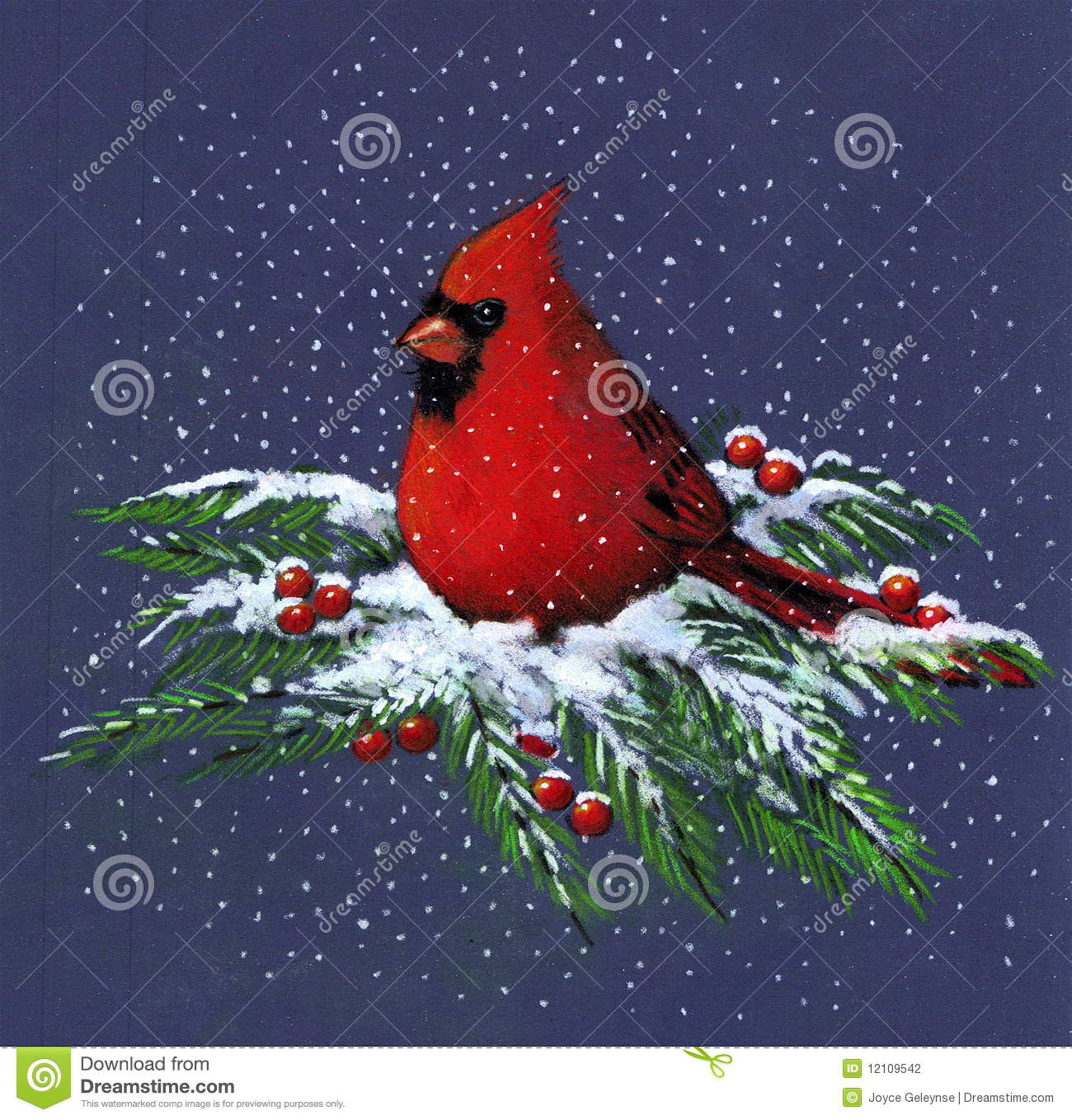 Drawing Of Cardinal In Snow Stock Photography - Image: 12109542