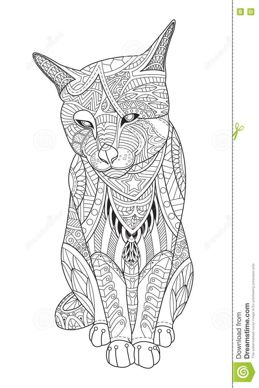 Volwassen Kleurplaat Kat Drawing Cat For The Coloring Book For Adults Stock Vector