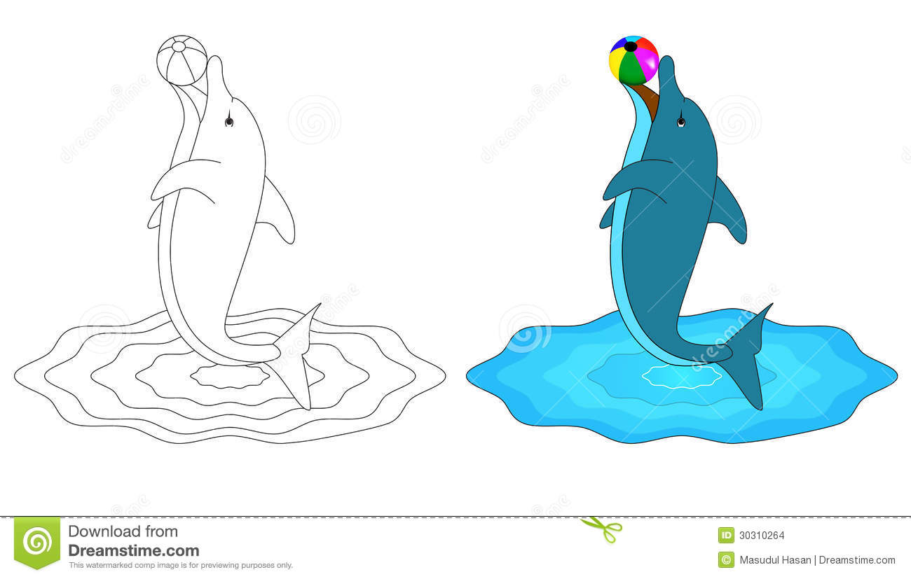 Dolphins Drawings Black And White D For Dolphin Stock Im...