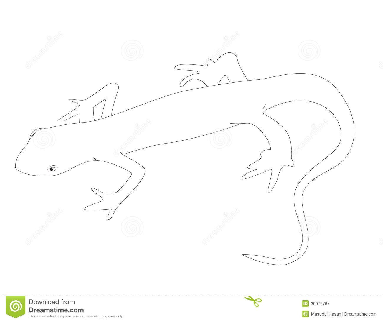 newt coloring pages - n for newt royalty free stock photography image 30076767