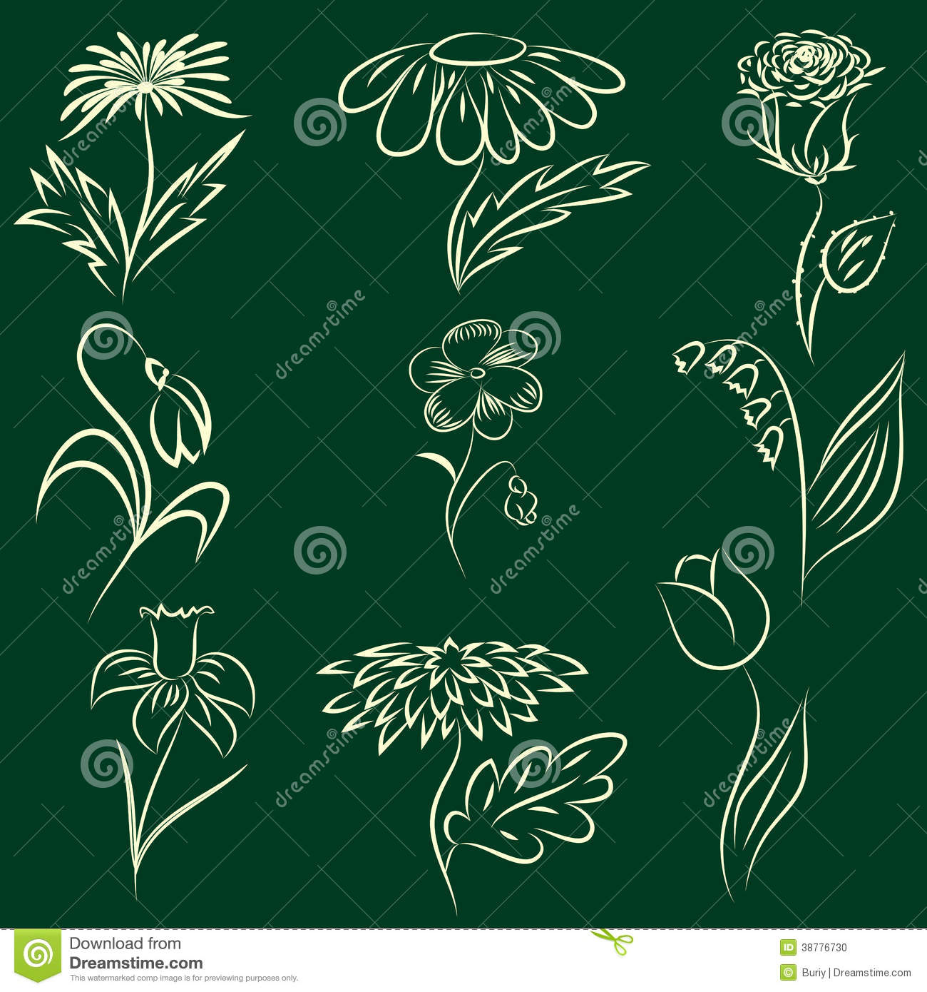 Line Art Flowers Vector : Drawing flowers stock illustration image