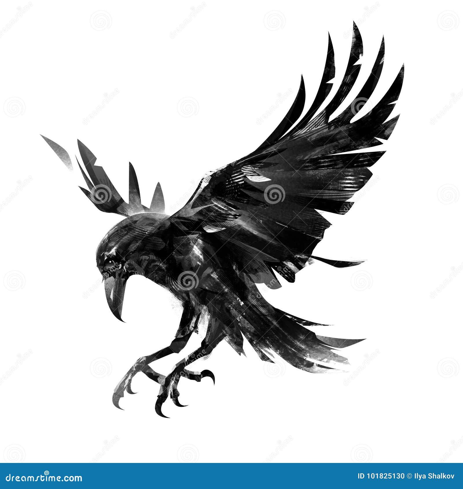 Crow Graphic Design