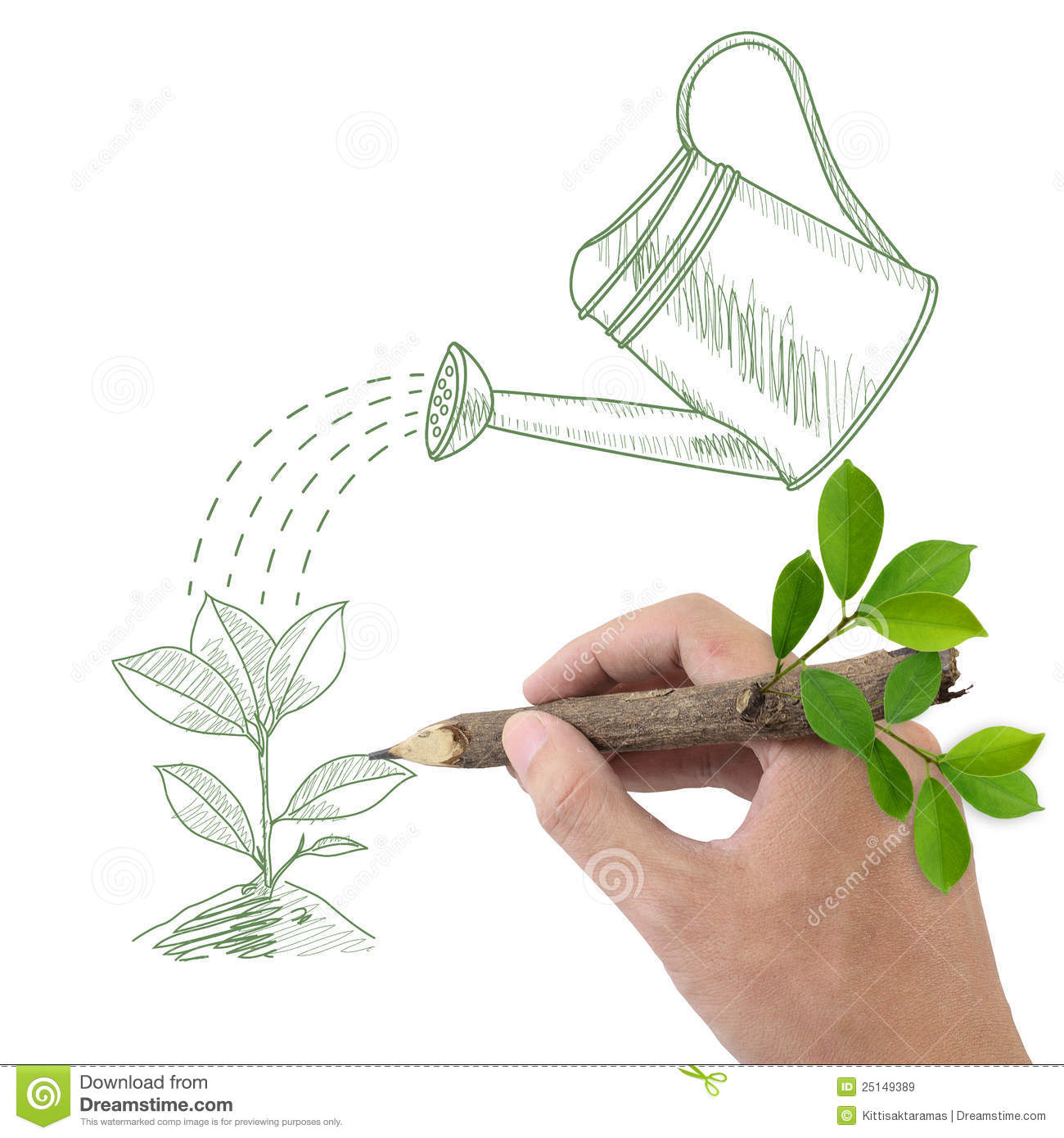Drawing Green Plant And Watering Can Stock Illustration