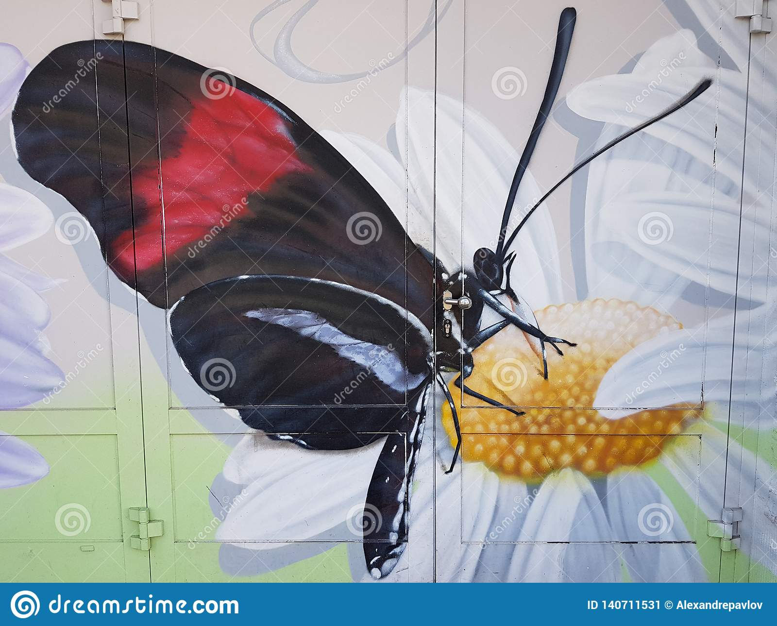 Butterfly on a camomile, graffiti on house doors, an entrance to the utility room