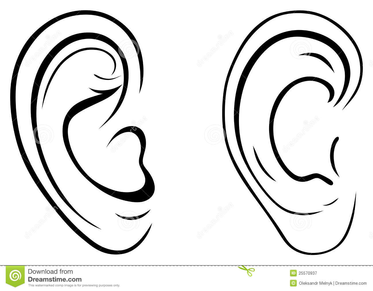 Drawing Human Ear Royalty Free Stock Photography Image
