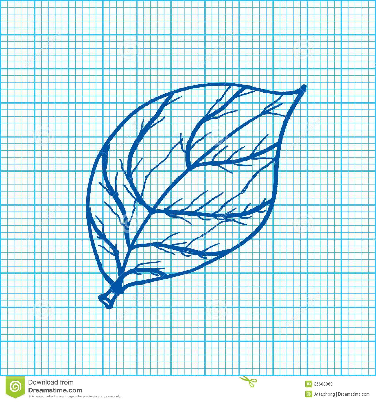 Drawing Of Leaves On Graph Paper Vector Royalty Free Stock