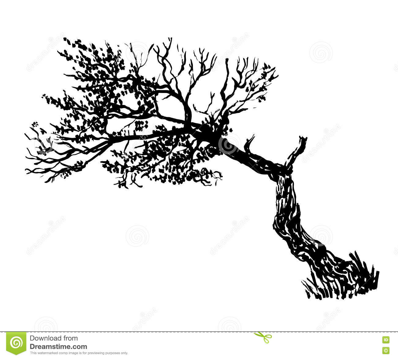Best 25+ Tree drawings ideas on Pinterest | How to draw ...