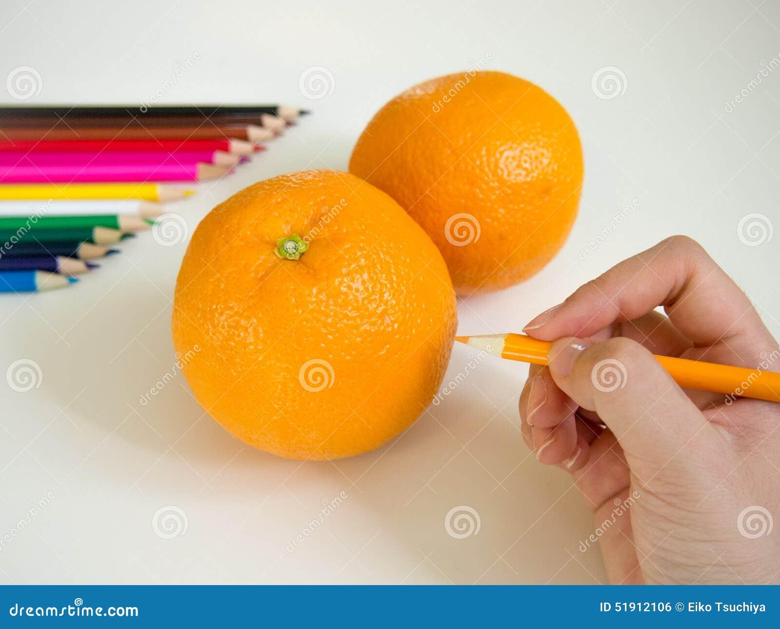 drawing orange stock photo image of closeup sweet