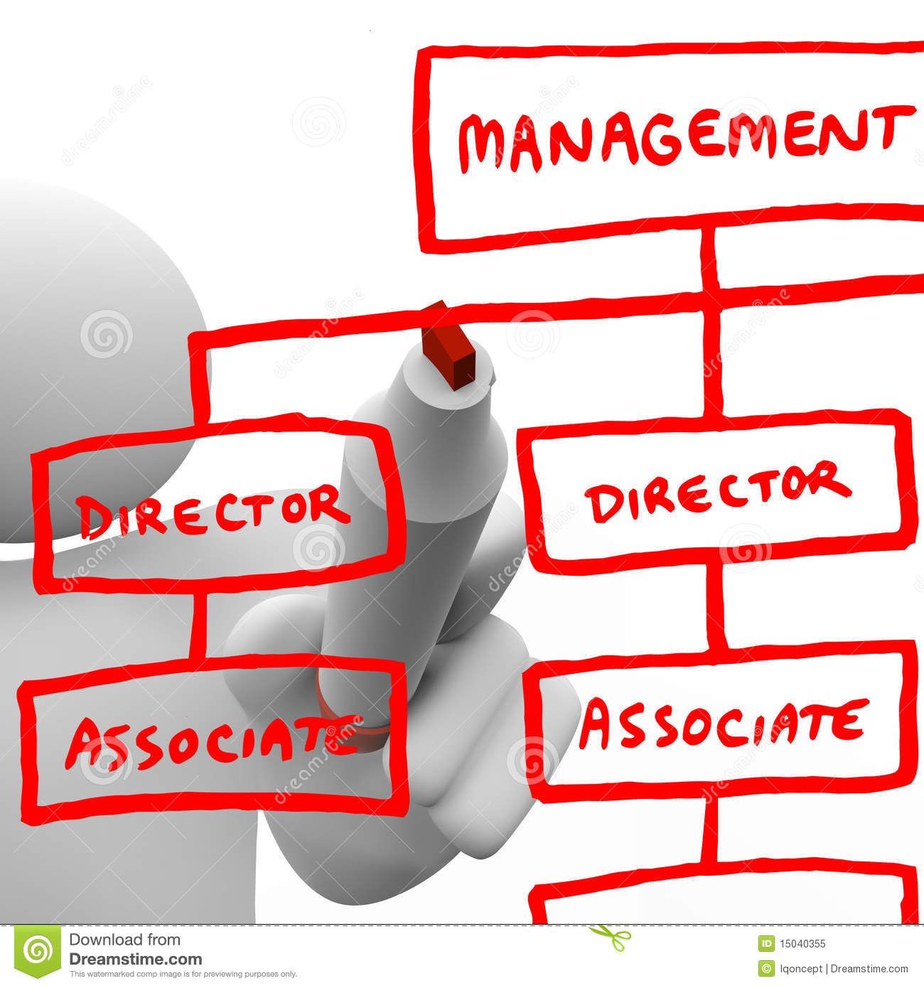 drawing organizational chart on board royalty free stock
