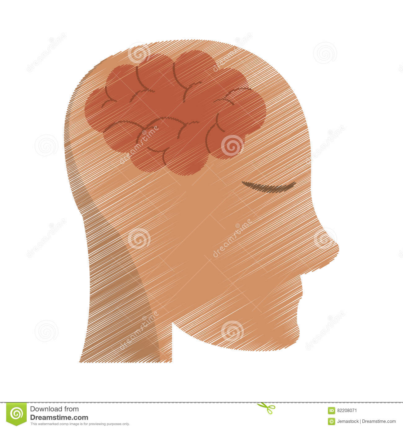 Drawing Person Head Brain Think Stock Vector - Illustration of ...