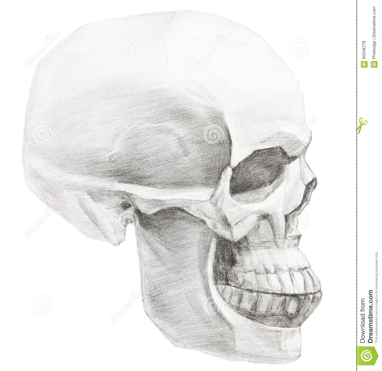 It is a graphic of Dashing Skull Profile Drawing