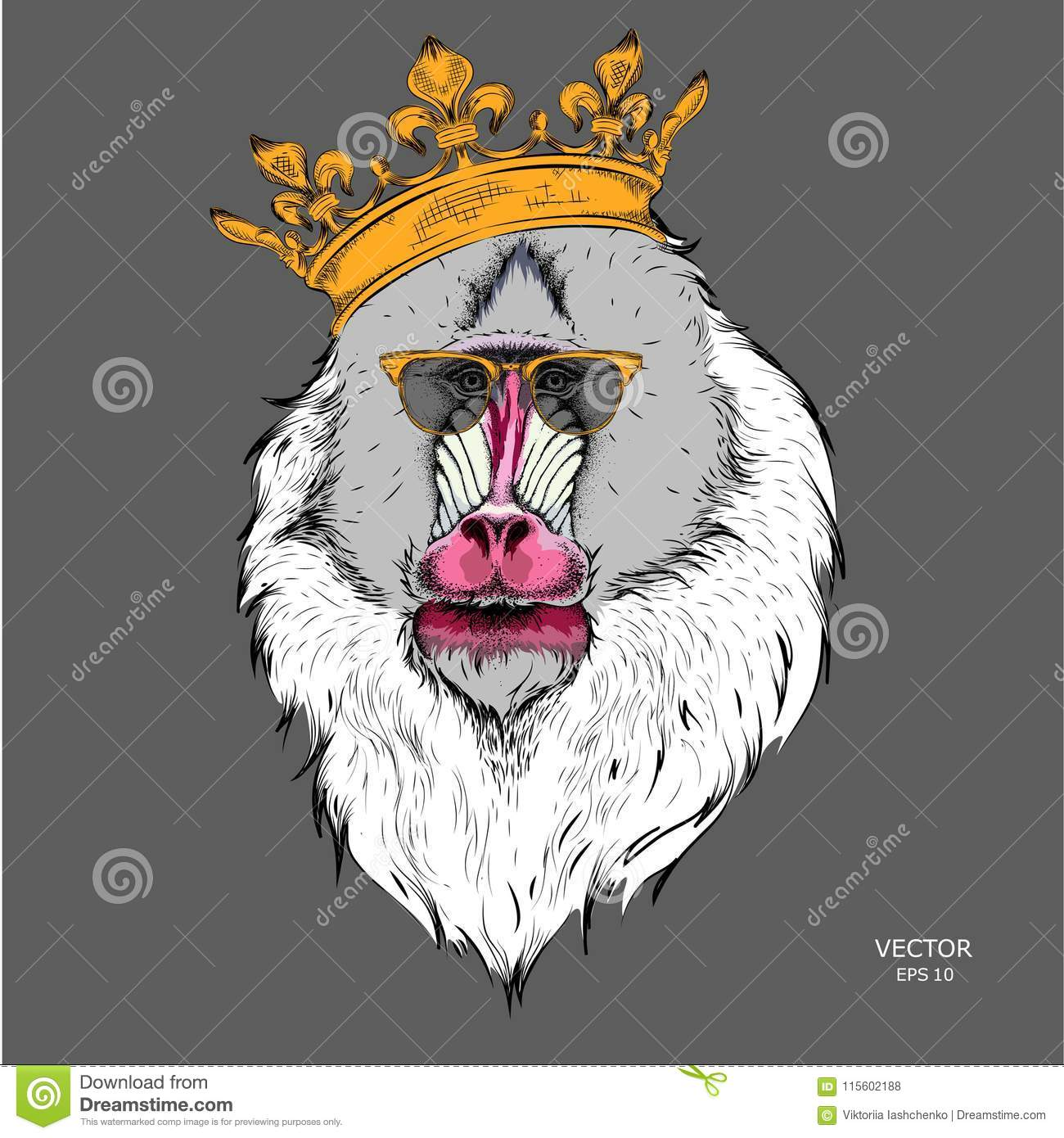 Download Drawn Monkey Mandrill In A Crown Vector Illustration Of Ape Stock