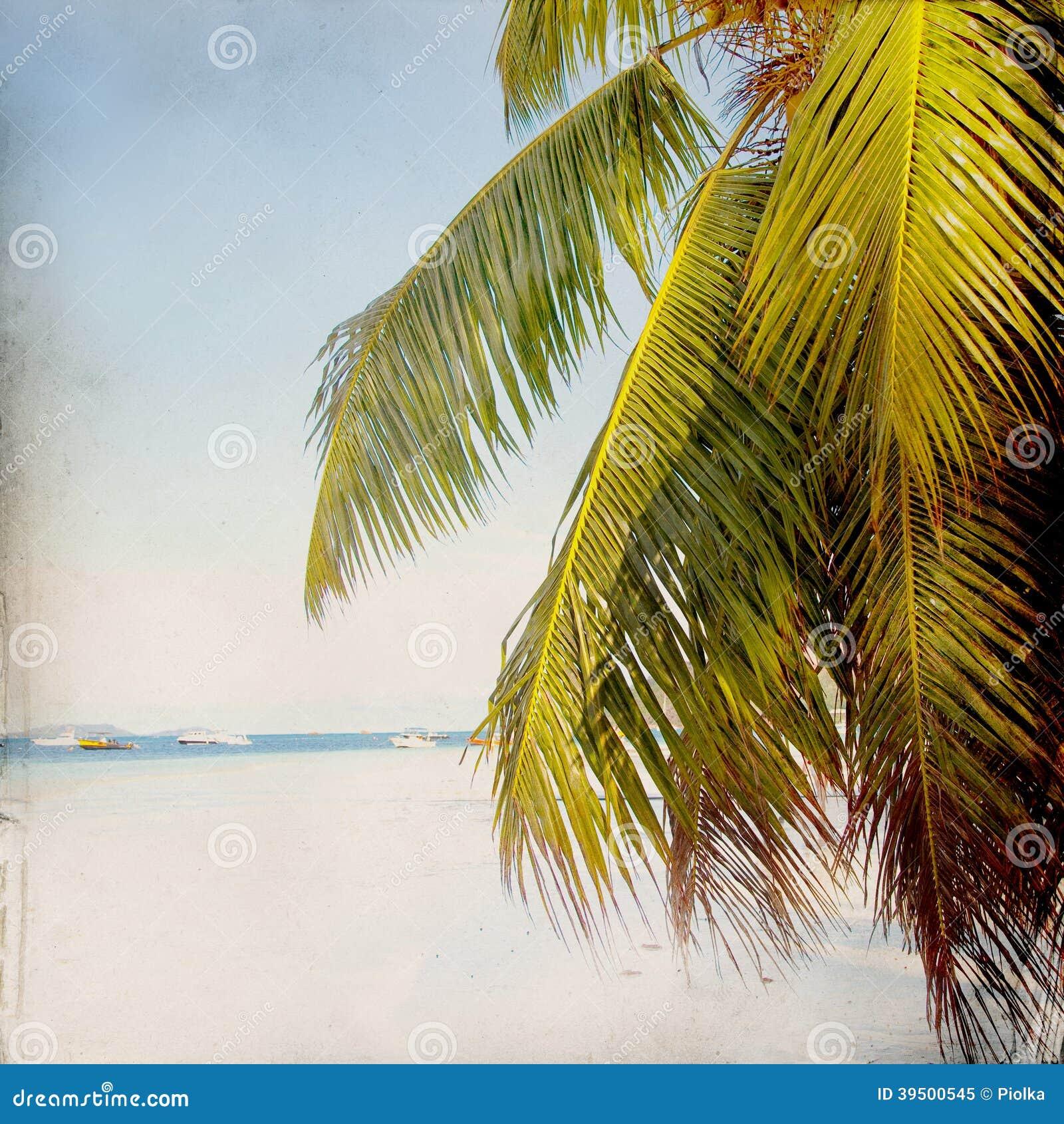 Dream Beach Grunge Background