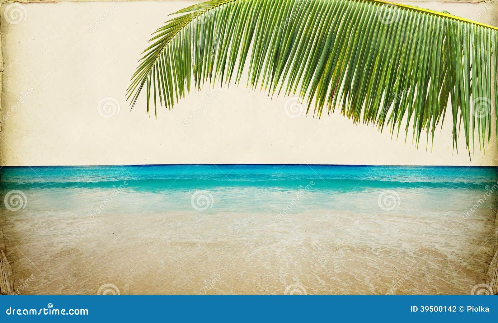 Dream Beach Paper Background