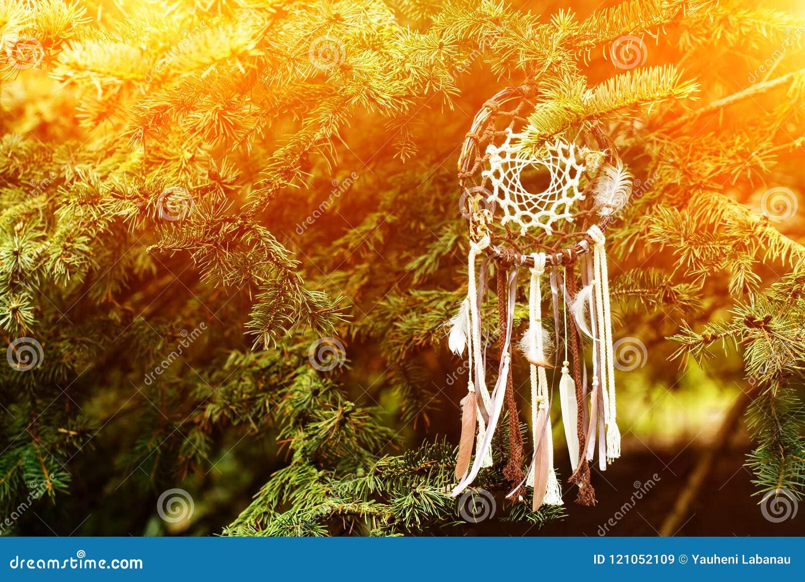 Dreamcatcher, amuleto nativo americano no por do sol shaman