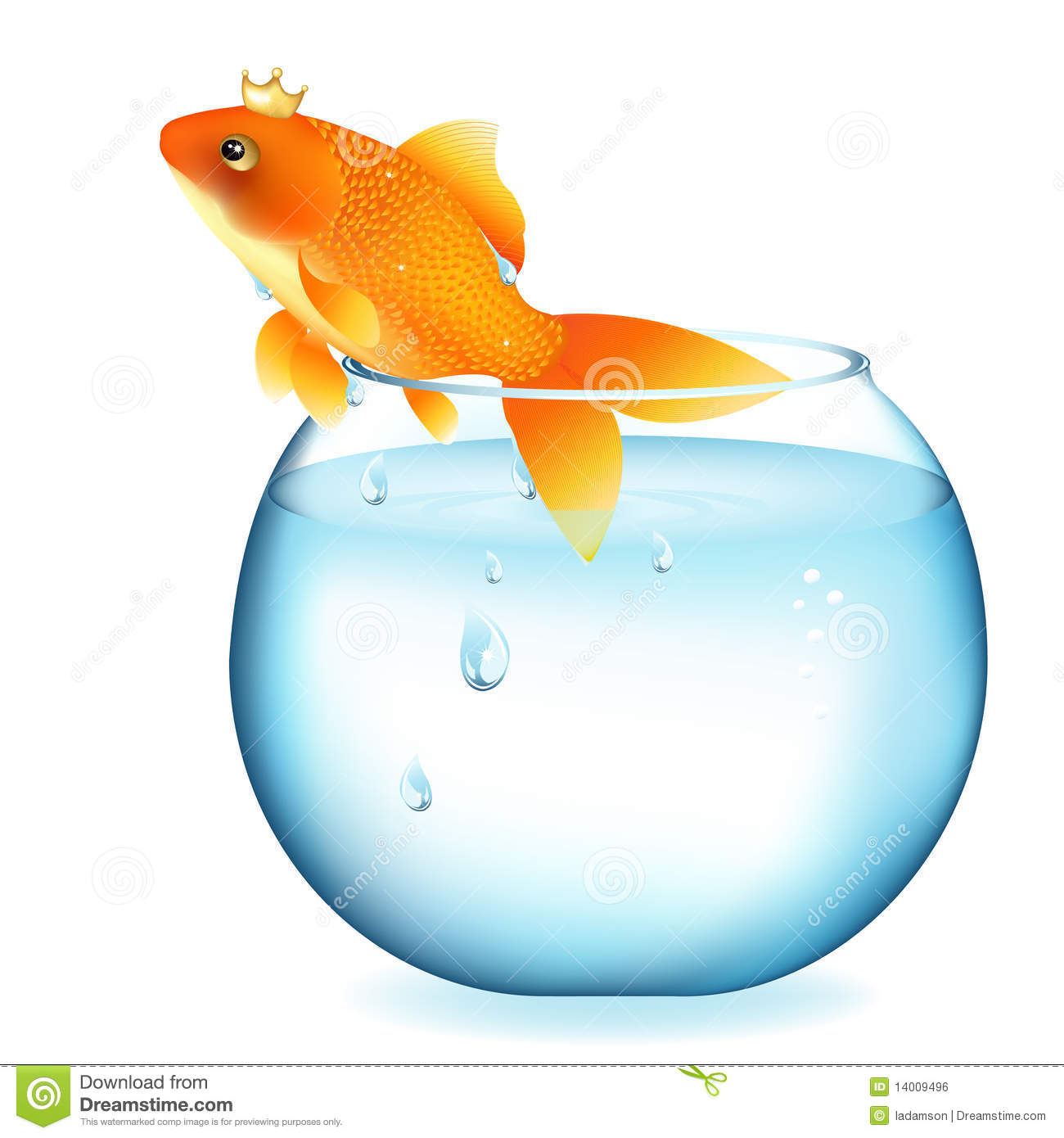 Dreaming goldfish in aquarium vector royalty free stock for Dream about fish
