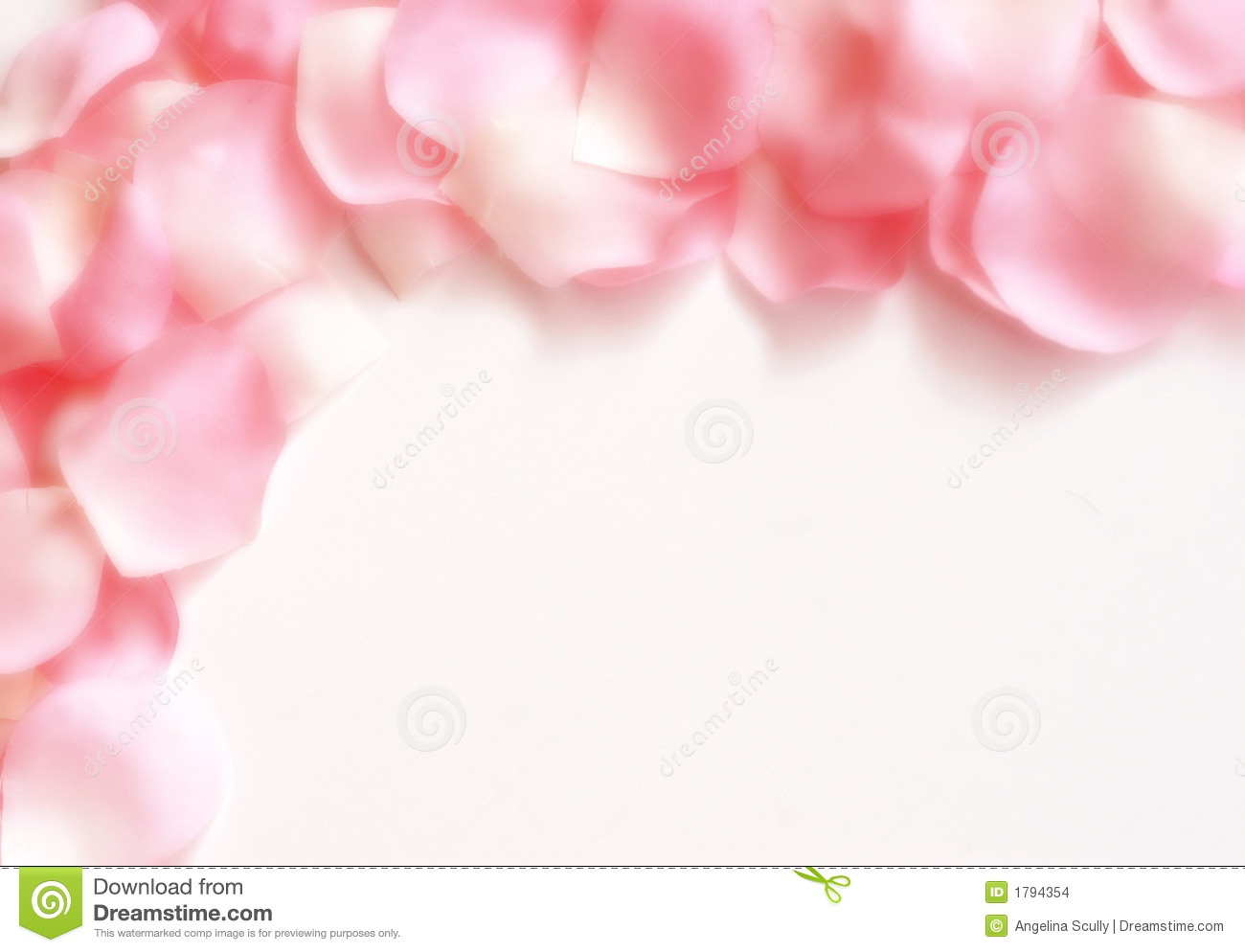 Dreamy Rose Petal Border stock photo. Image of background ...