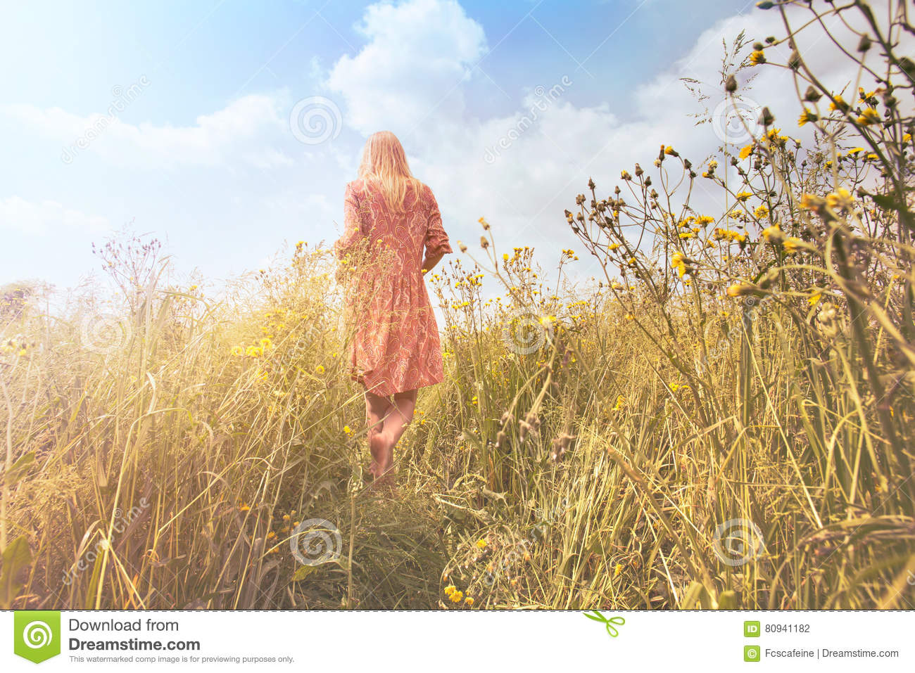 Nature Images 2mb: Dreamy Woman Walking In Nature Towards The Sun Stock Photo