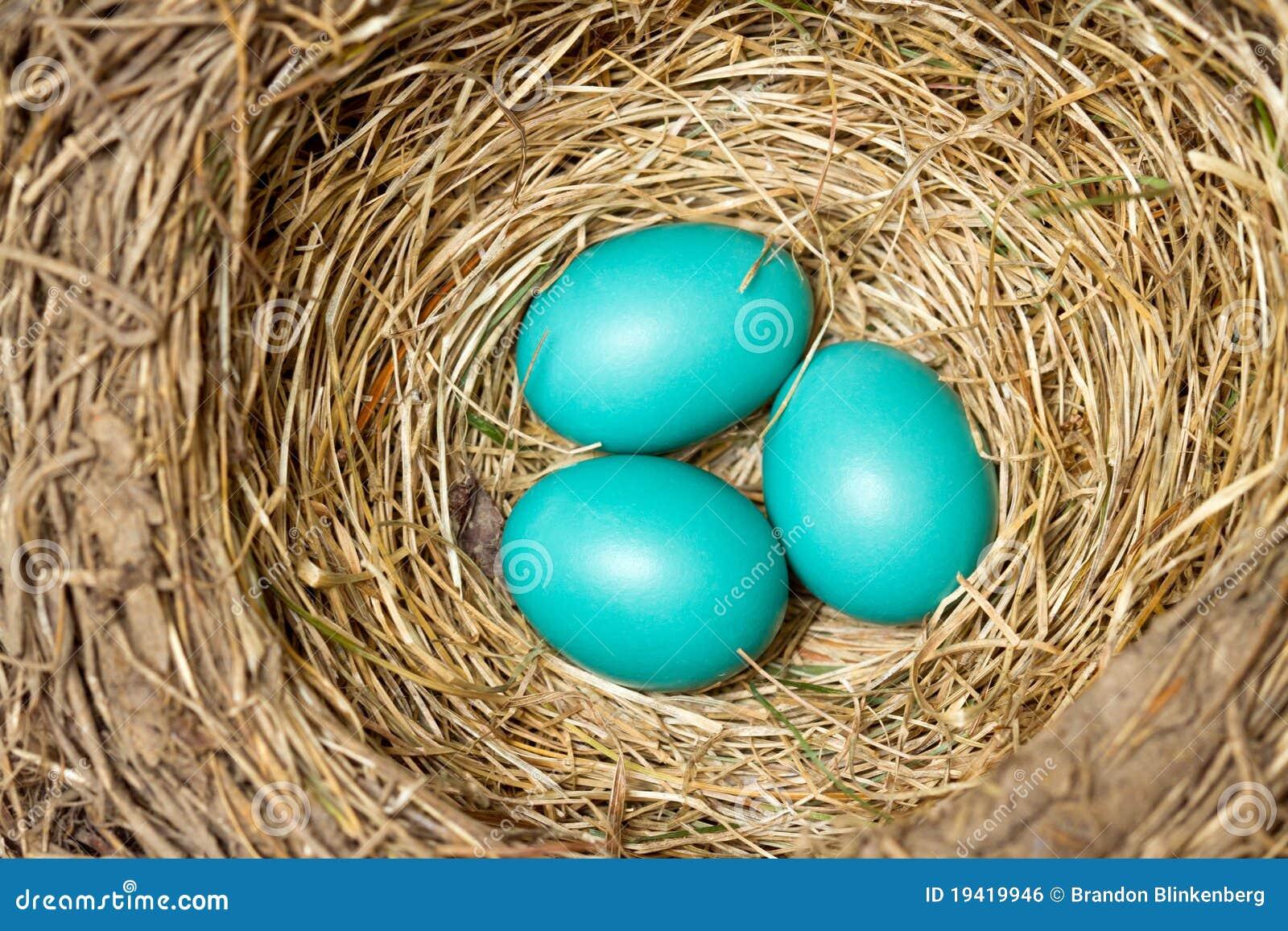 Blaue Eier
