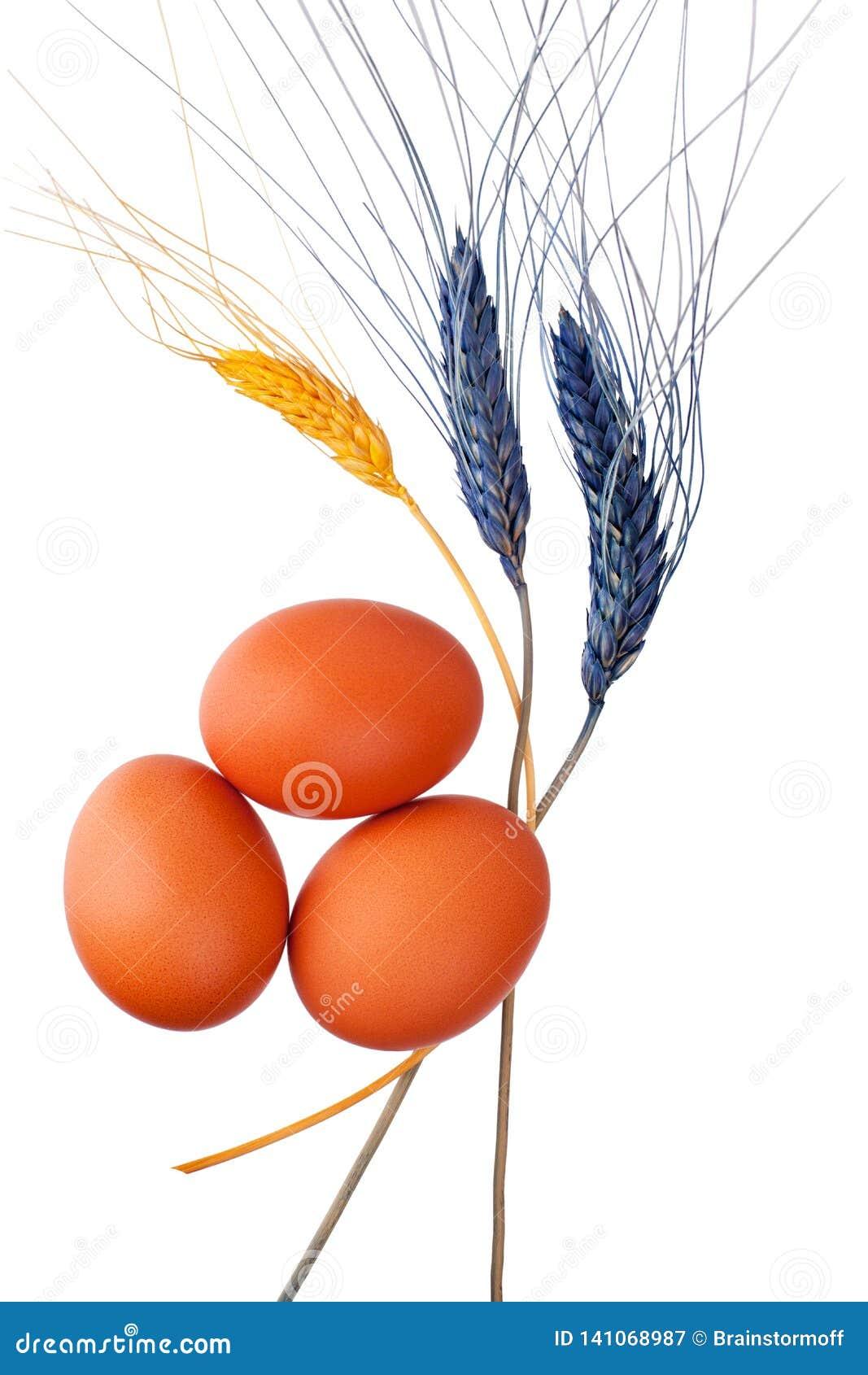 Drei braun oder rote Eier und Hintergrund der dekorativen Weizenähren weißer lokalisiert