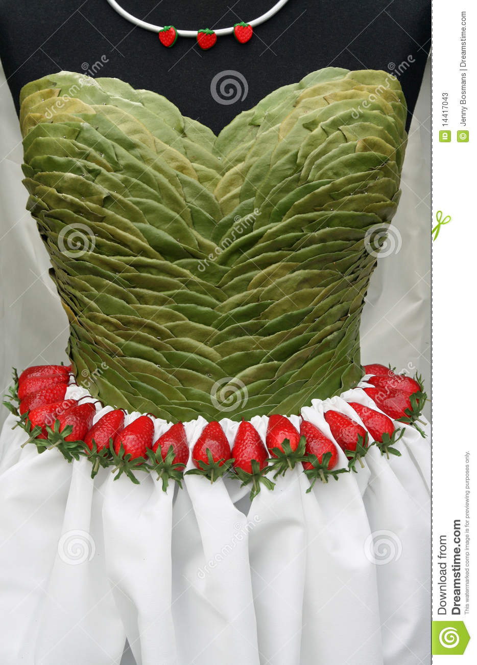Dress Top Made From Leaves Stock Photos Image 14417043