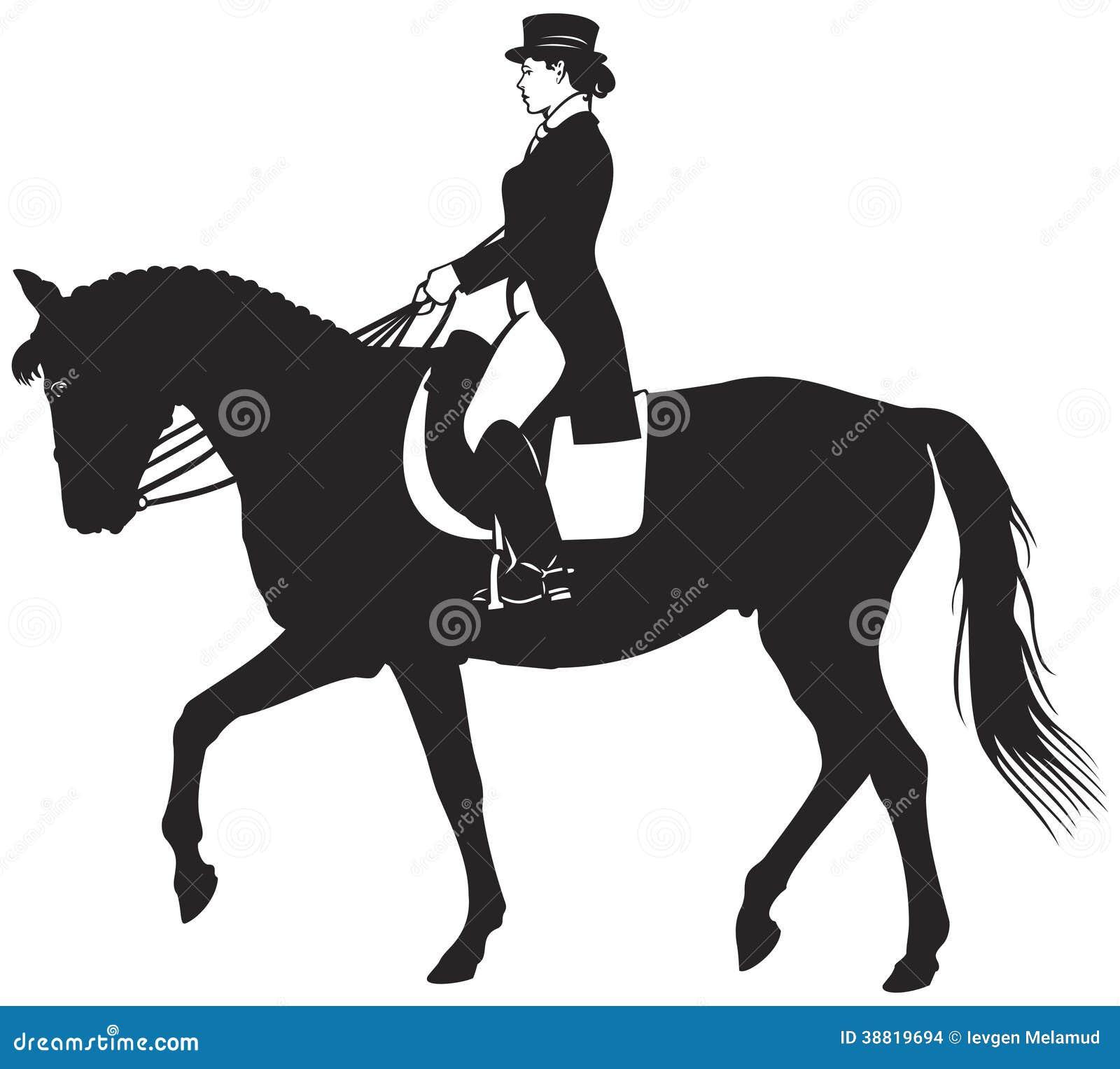 Dressage Horse ...
