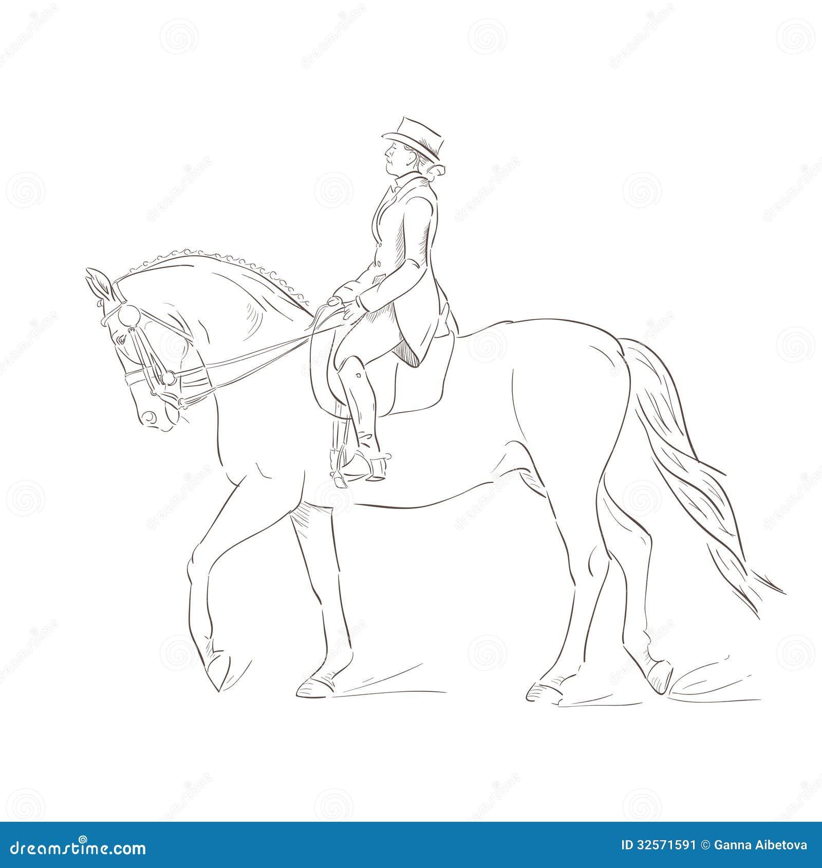 Dressage Horse Stock Image Image 32571591