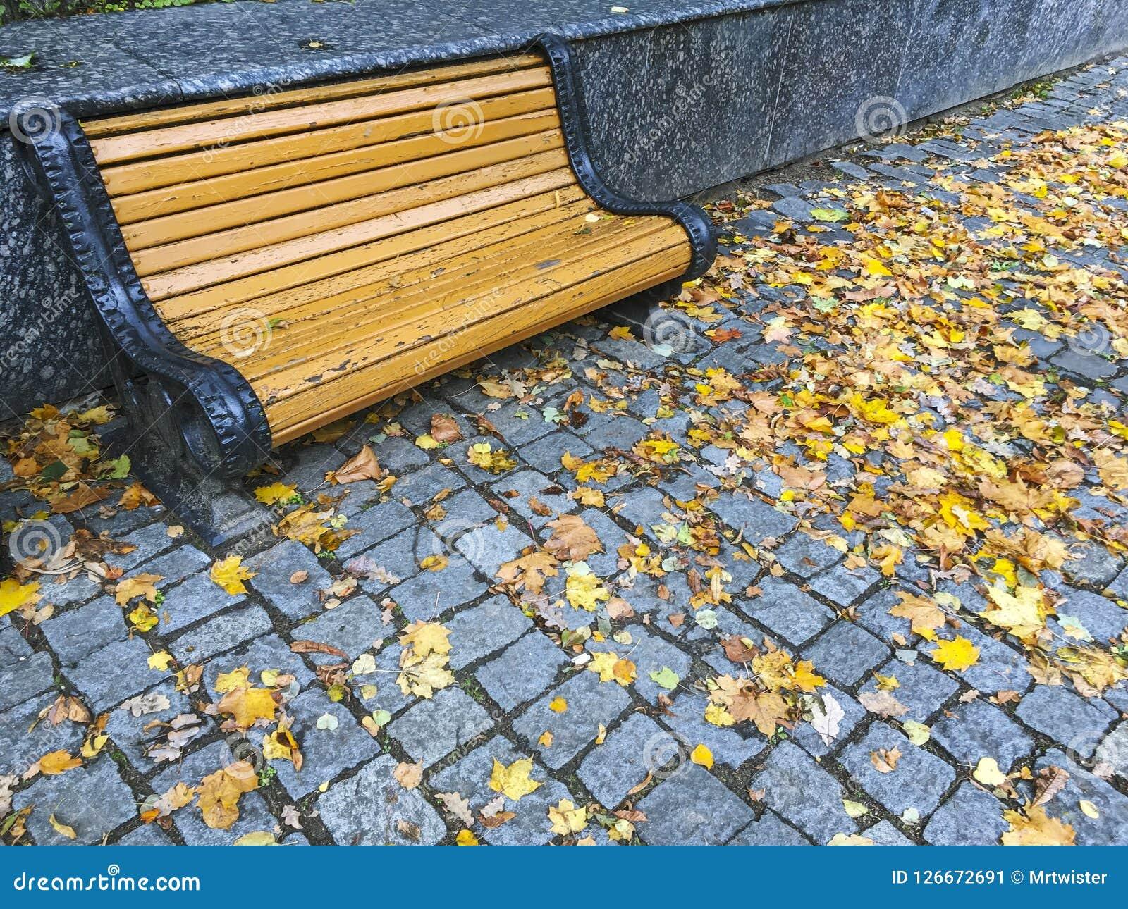 Drewniana ławka na kamiennym bruku z kolorowymi spadać liśćmi Obraz Stock