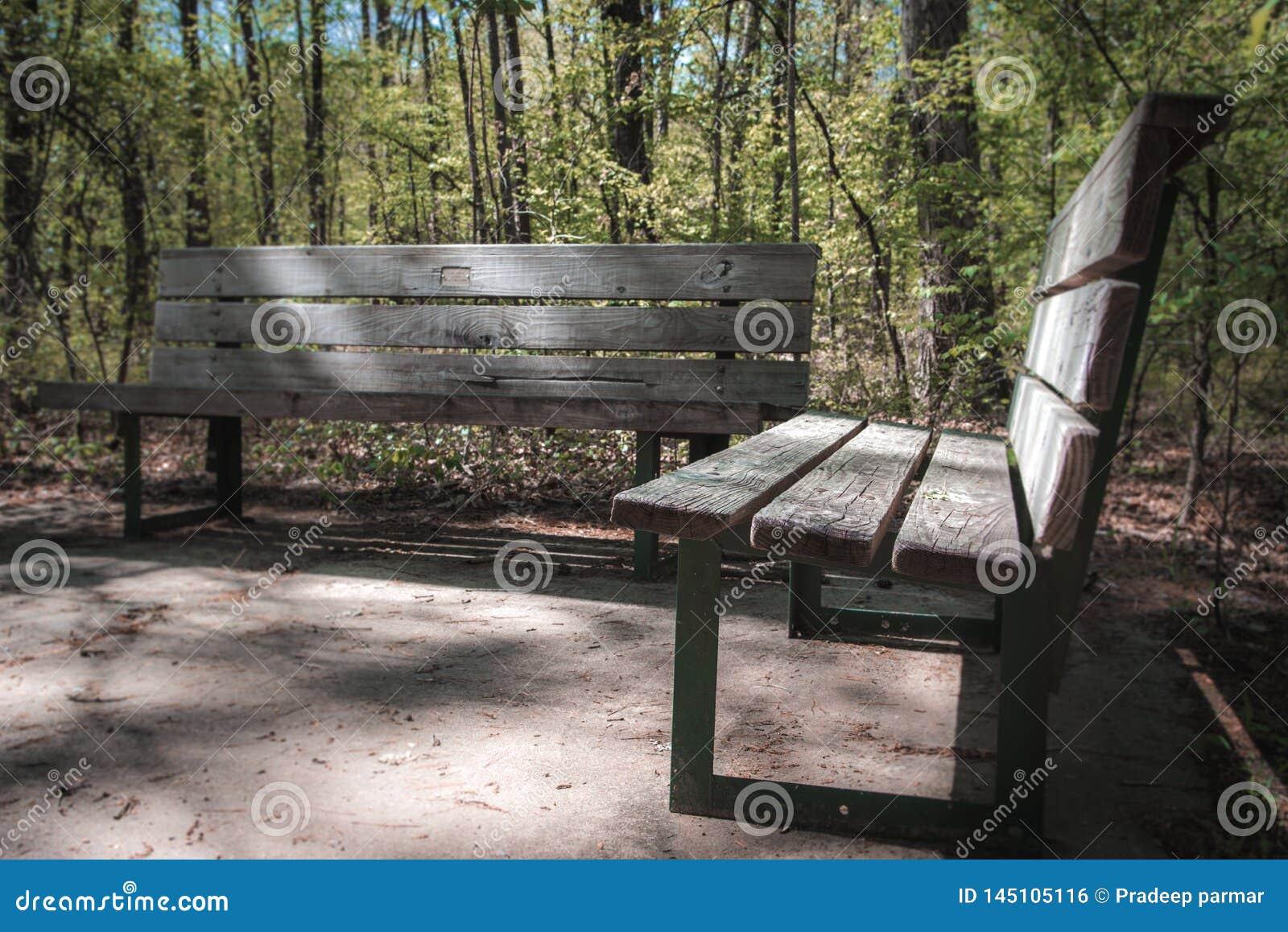 Drewniana ławka na stronie ślad w parku
