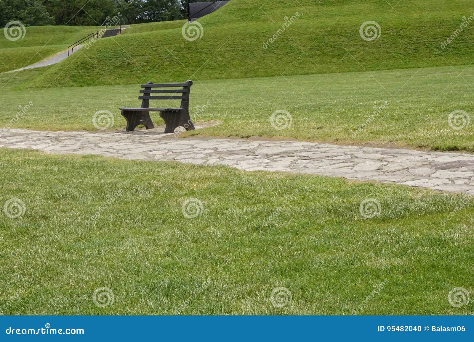 Drewniana ławka z zieloną trawą w parku