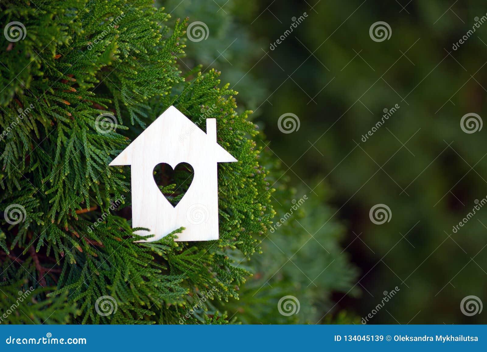 Drewniana domowa ikona z dziurą w formie otaczającej zielonym tui conifer serce rozgałęzia się plenerowego