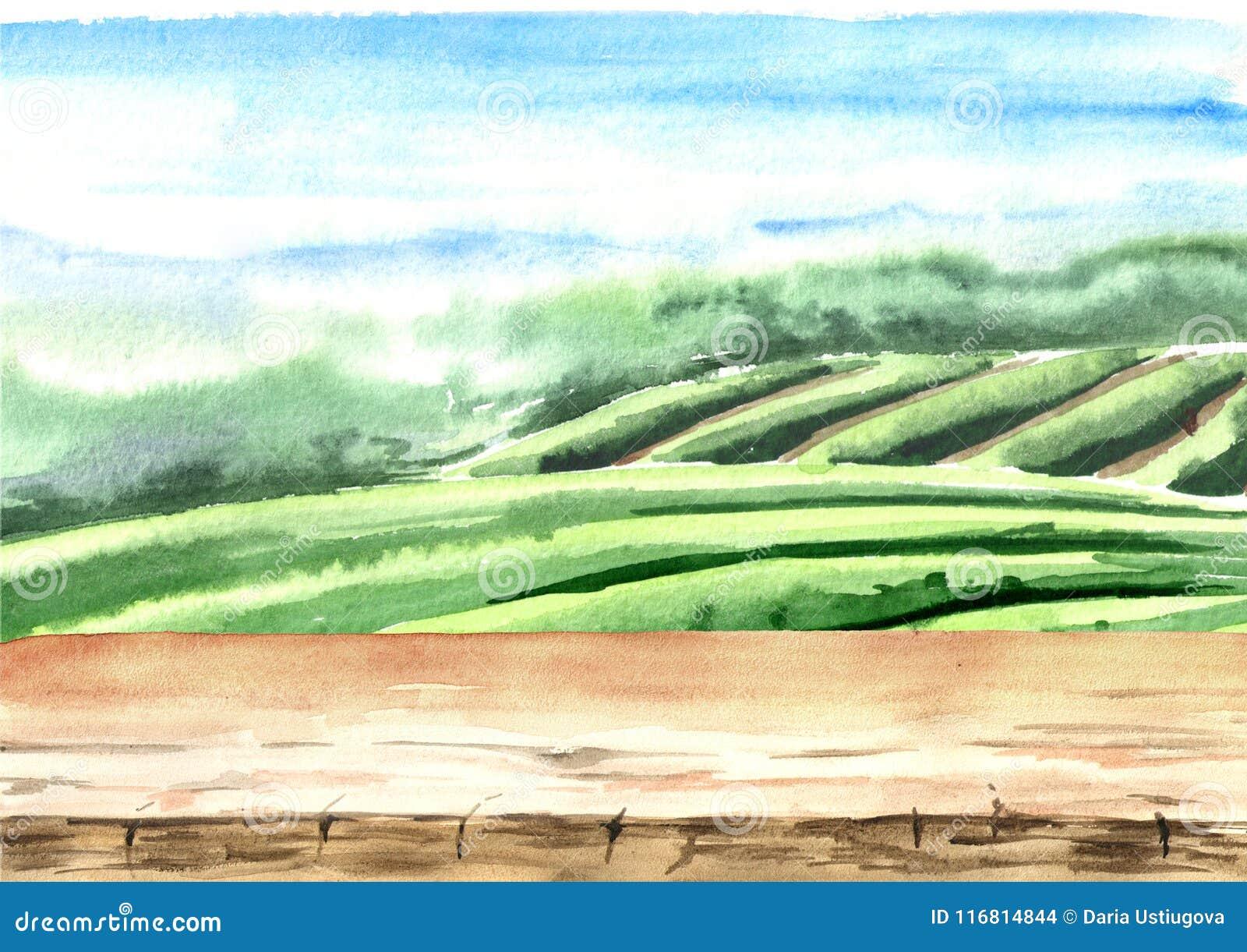 Drewniana podłoga na herbacianej plantaci Ręka rysująca akwareli ilustracja Herbaciany tło