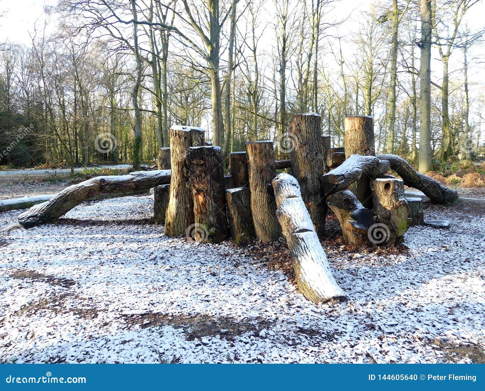 Drewniana sztuka terenu melina w zima śniegu, Chorleywood błonie