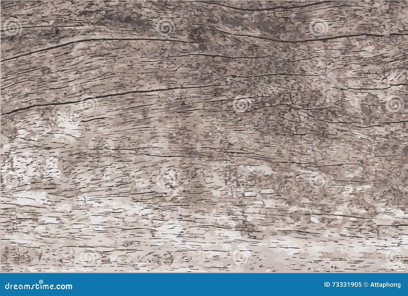 Drewniana tekstura z naturalnym deseniowym wektorem