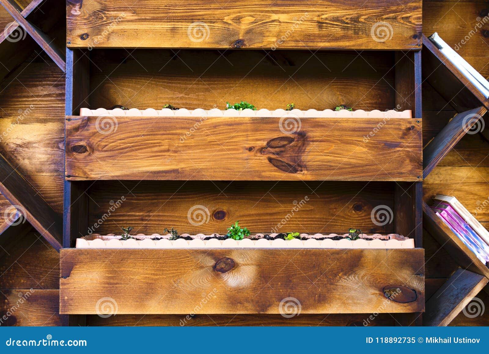 Drewniane Półki Dla Kwiatów łóżek Na ścianie Obraz Stock