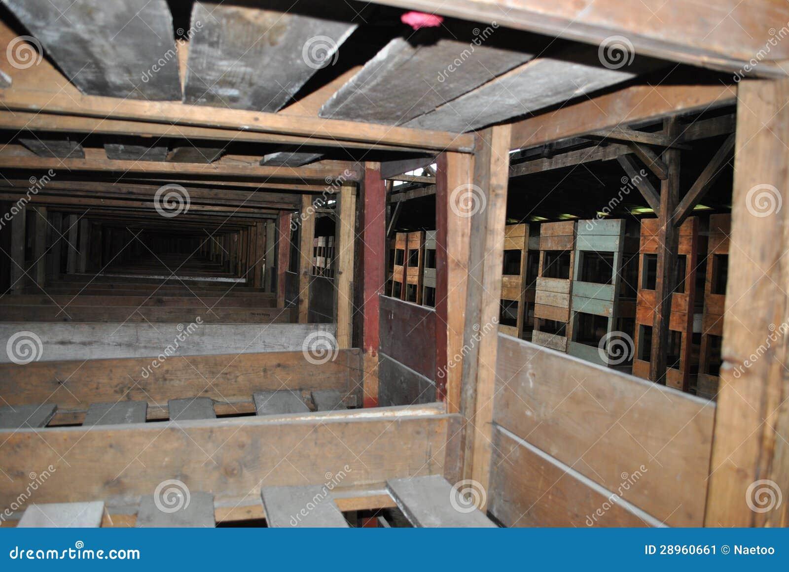 Drewniani łóżka w koszary, Birkenau koncentracyjny obóz
