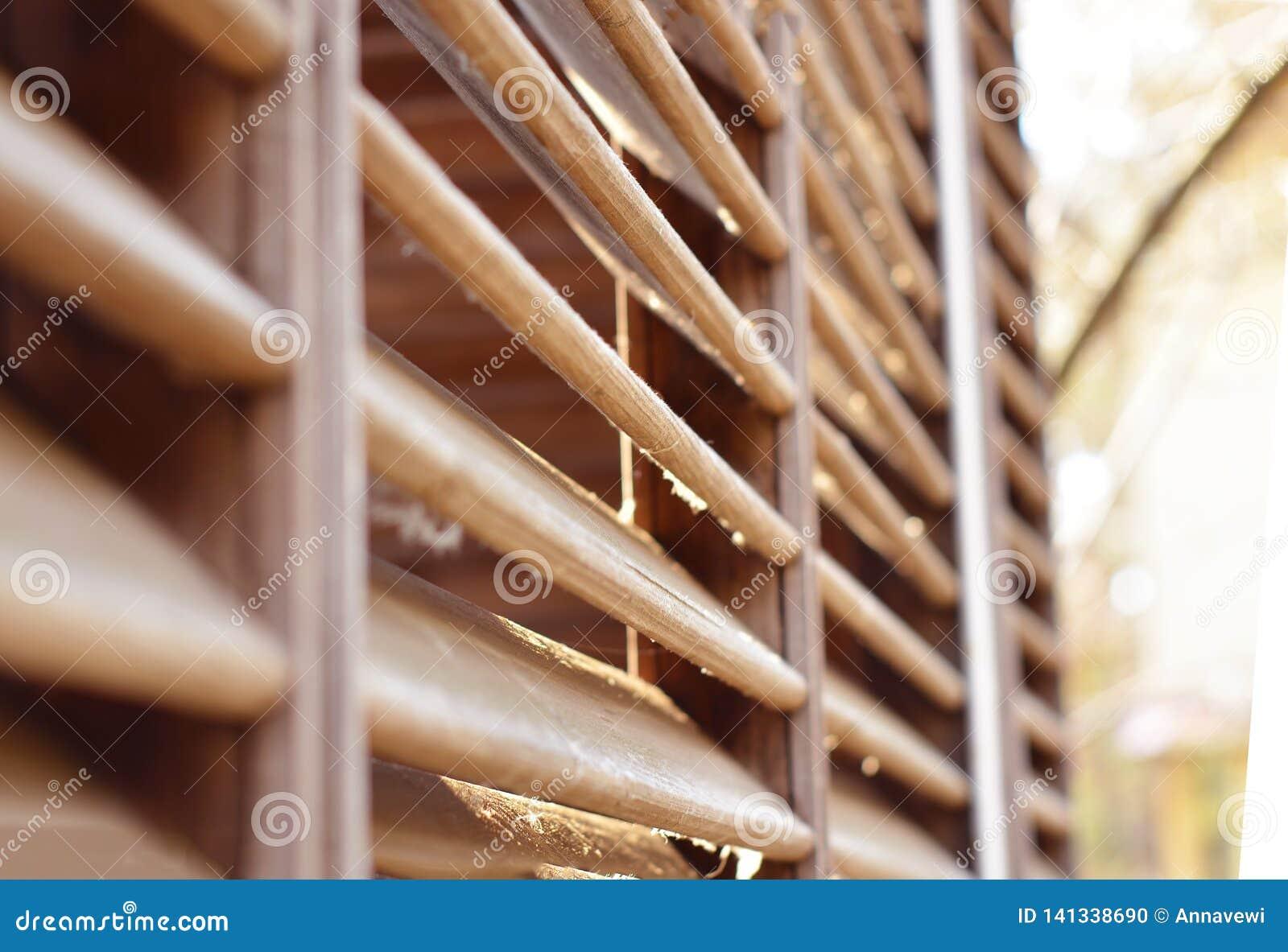 Drewniani rozdziały w świetle słonecznym