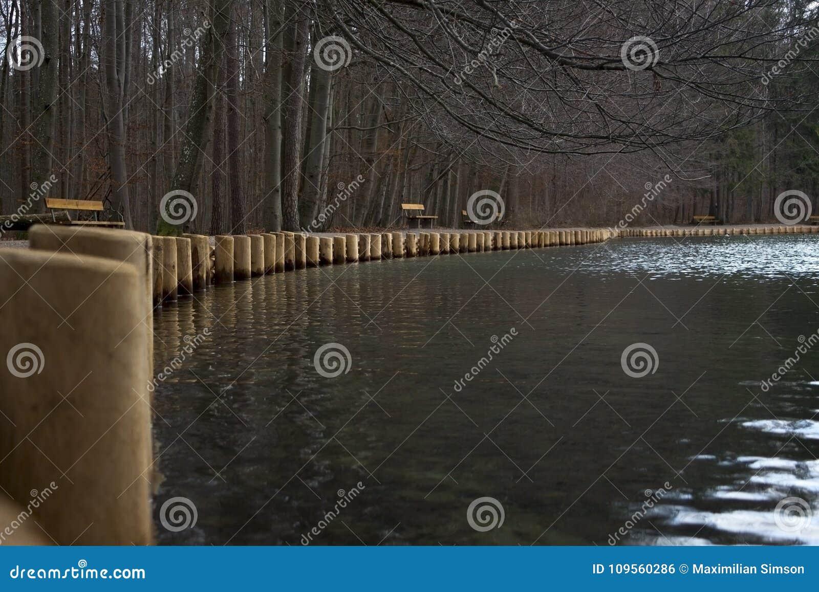 Drewniani słupy jeziornym brzeg na zimnym dniu