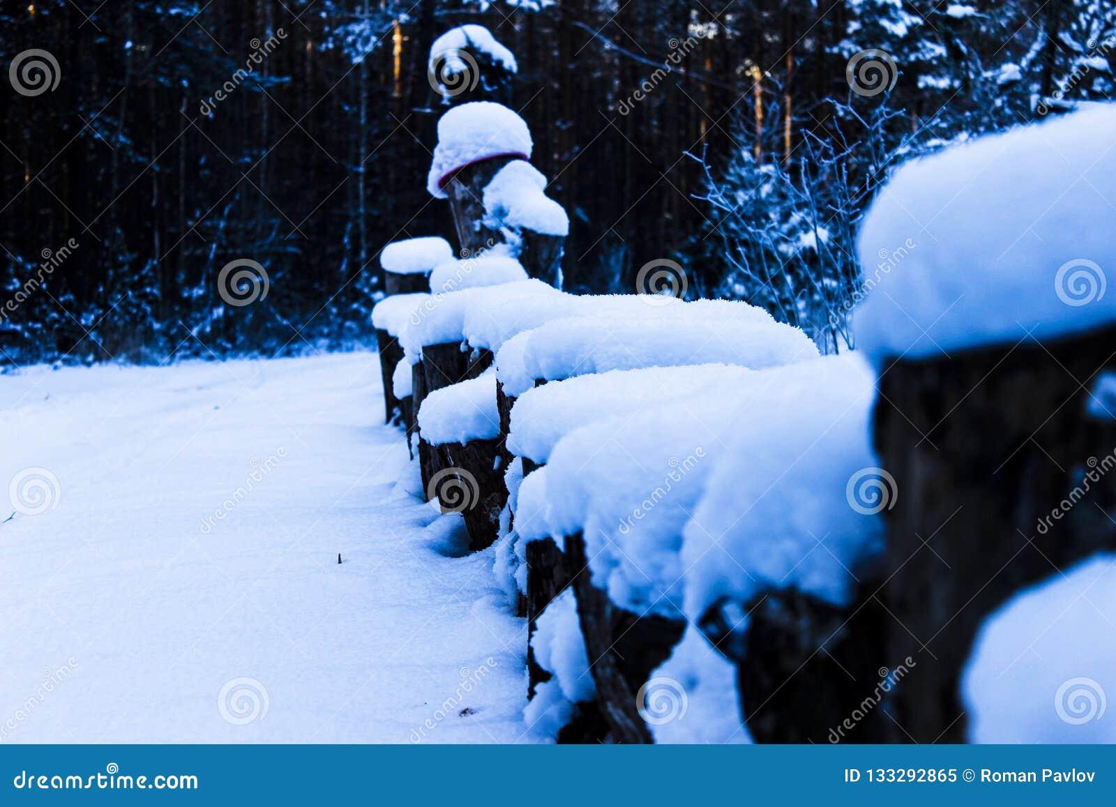 Drewniani sosnowi fiszorki pod śniegiem