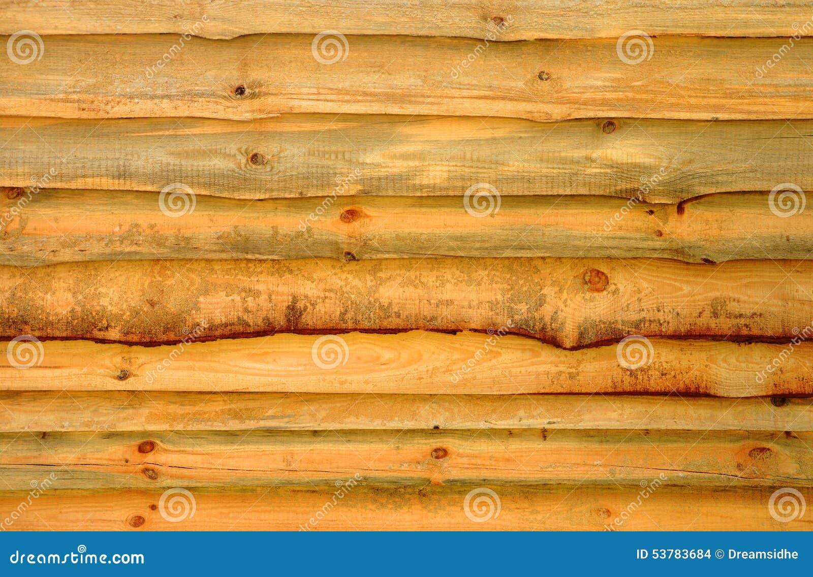 Drewniany beli ogrodzenie
