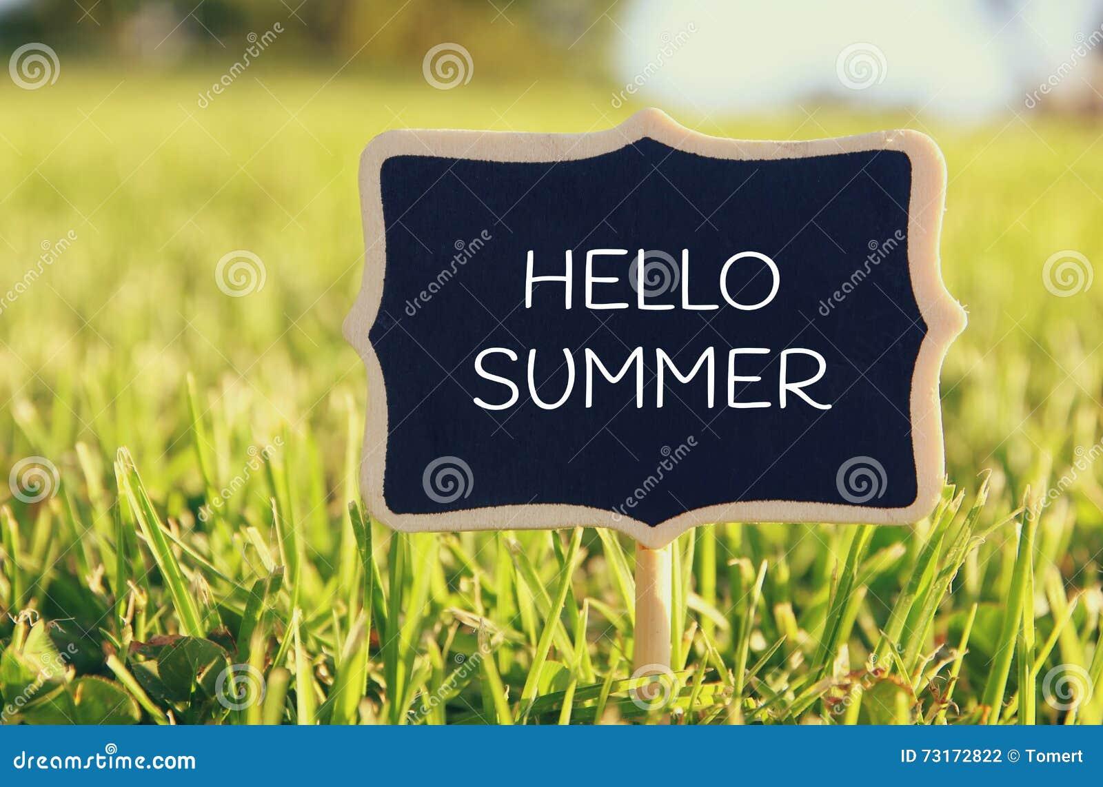 Drewniany chalkboard znak z wycena: CZEŚĆ lato