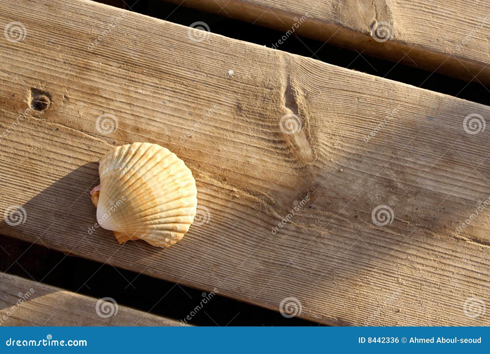 Drewniany doku seashell