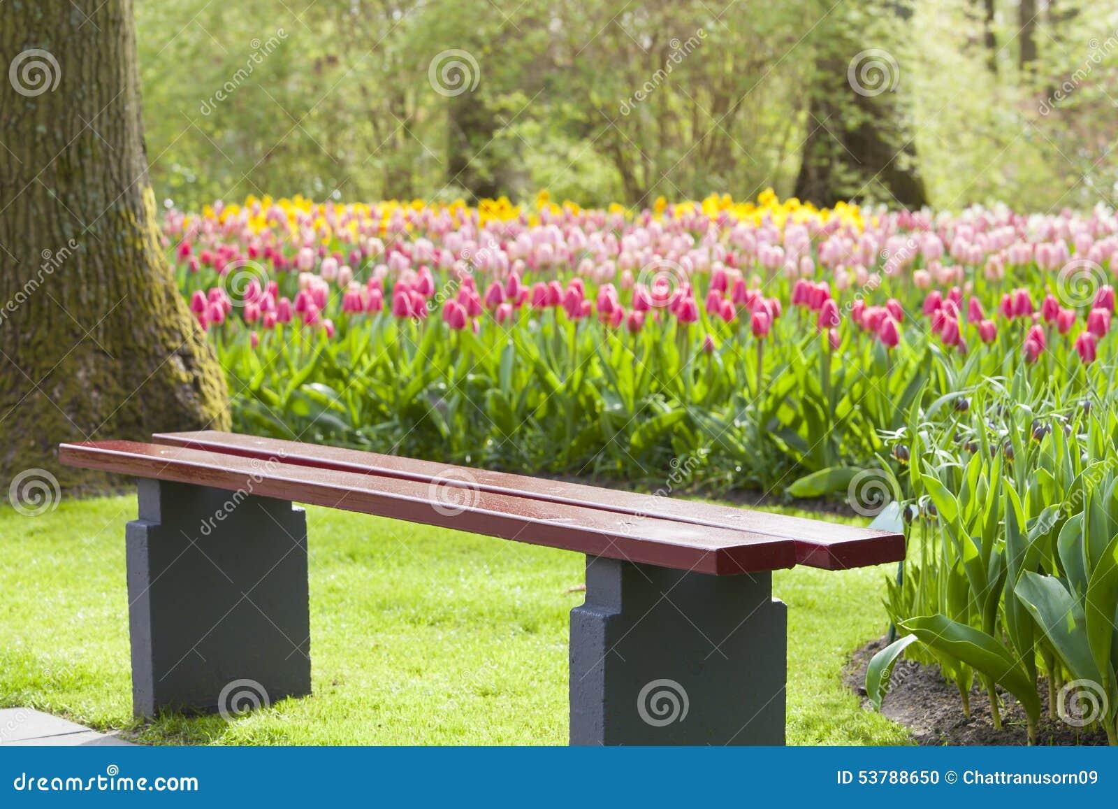 Drewniany krzesło w tulipanowym colourful parku