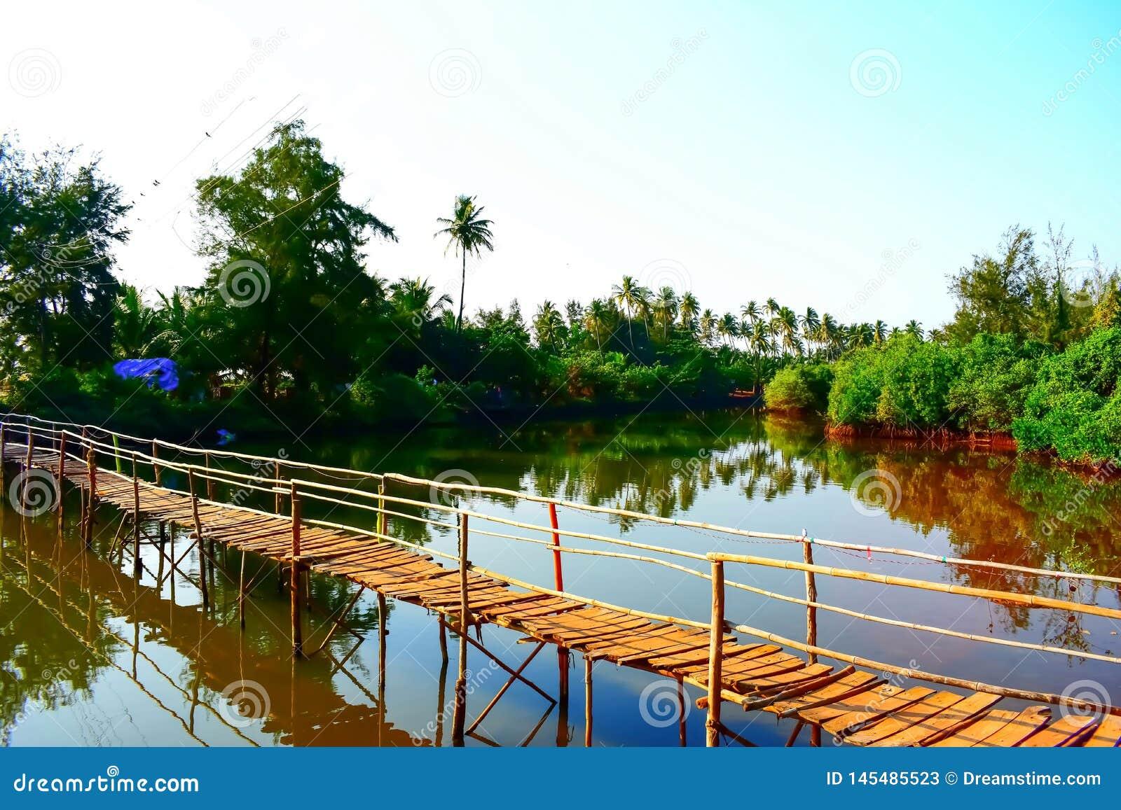 Drewniany most nad stojącymi wodami