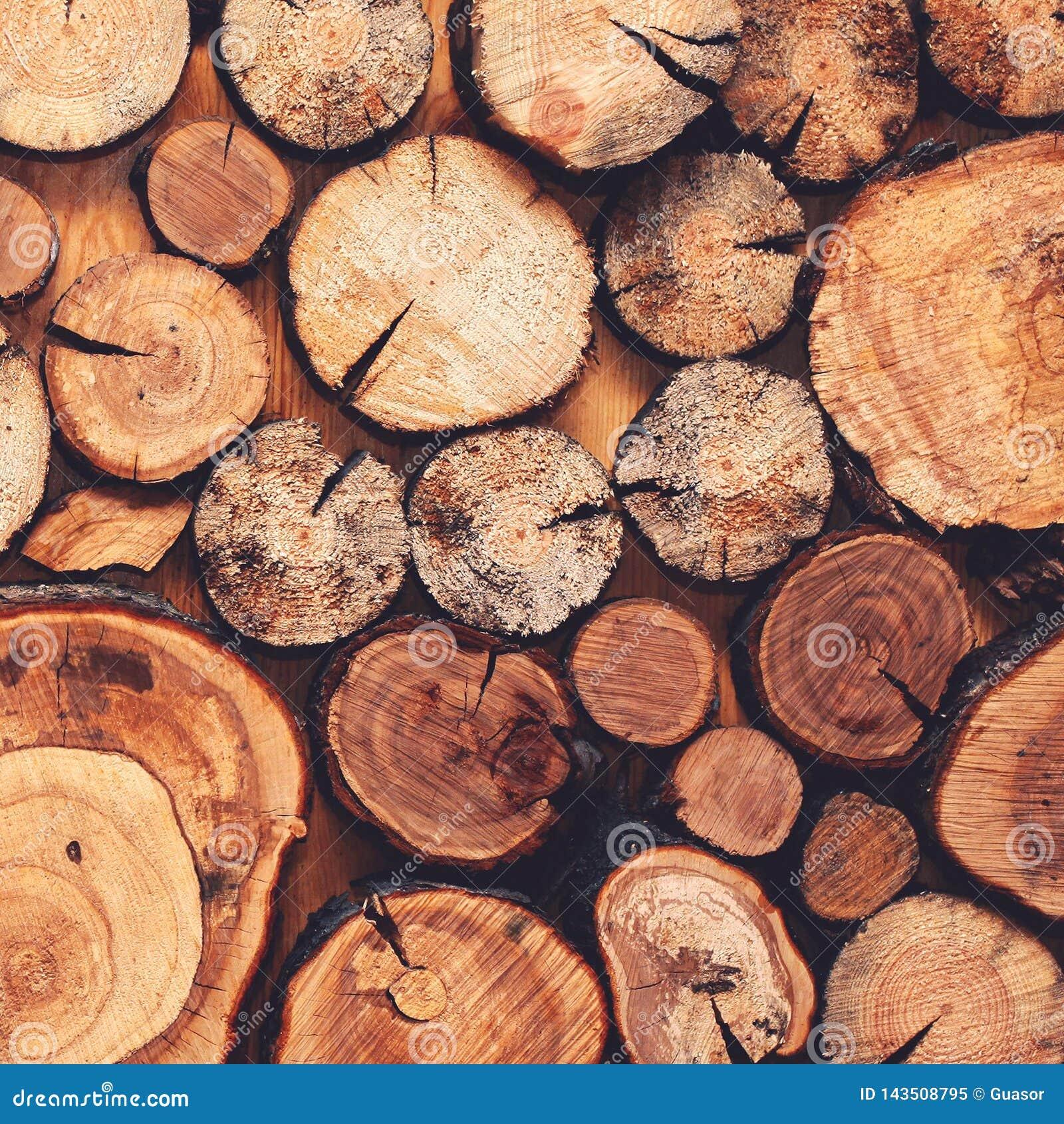 Drewniany naturalny piłujący beli zbliżenie dla tła lub abstrakcji, odgórny widok, mody mieszkanie nieatutowy