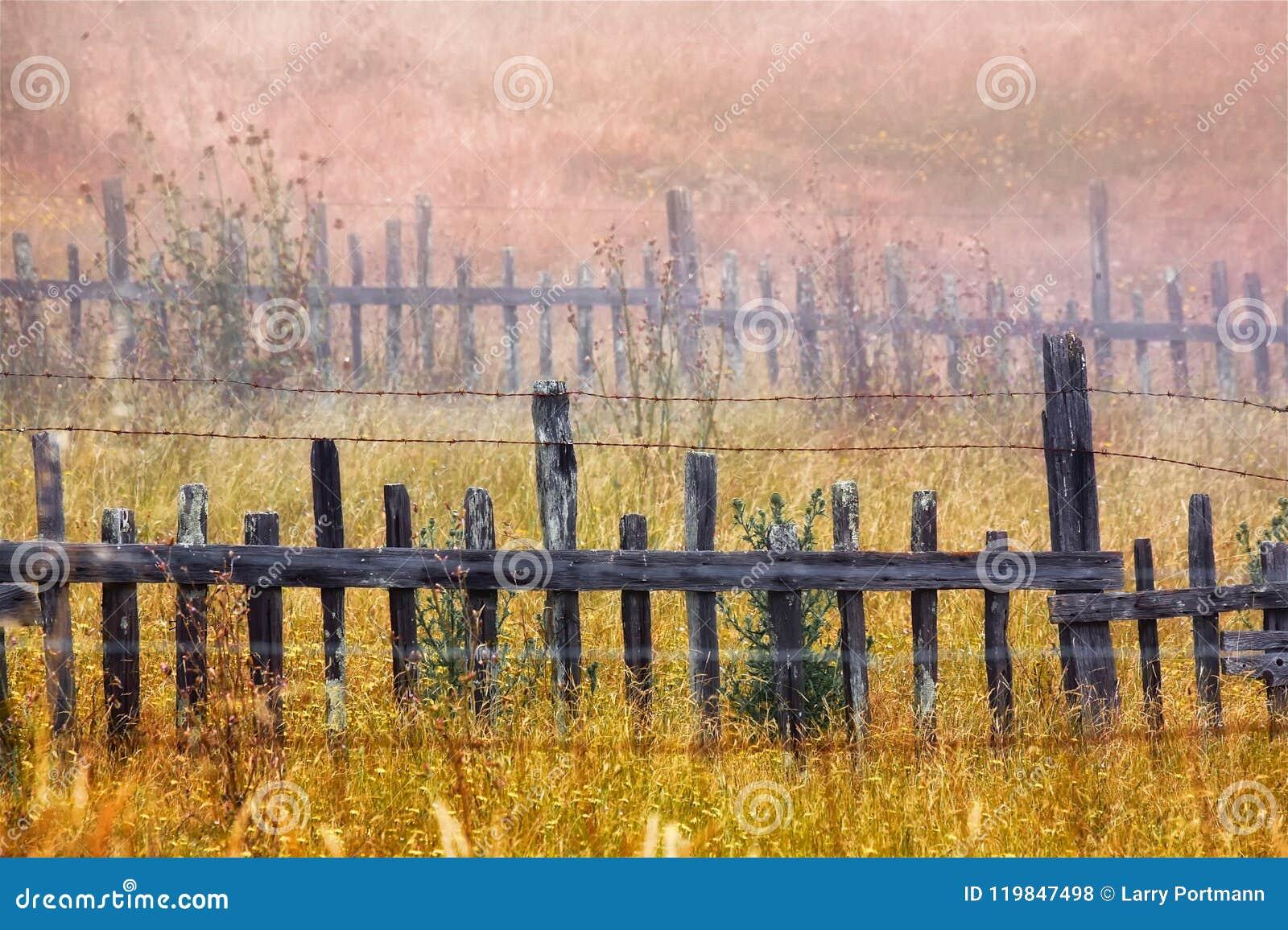 Drewniany ogrodzenie w polu